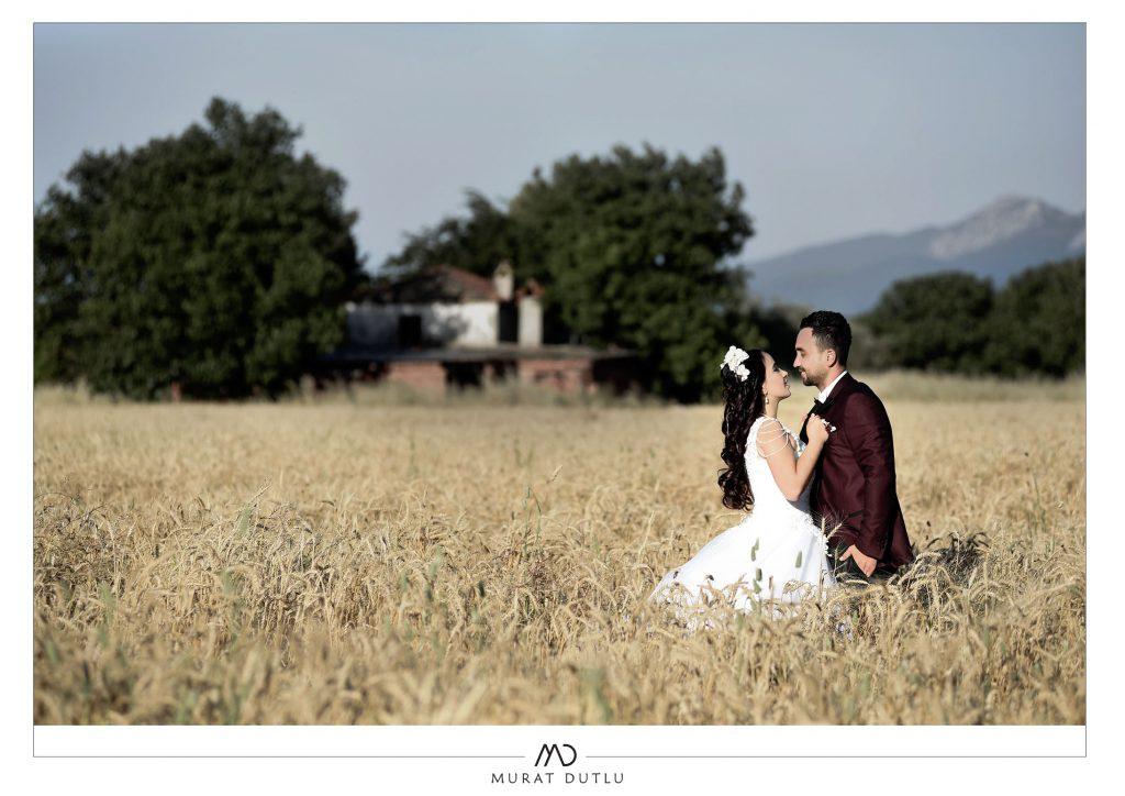 Başak tarlası düğün dış çekim fotoğrafları